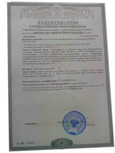 Свидетельство о государственной регистрации права (Управление Федеральной службы государственной регистрации, кадастра и картографии по Камчатскому краю) от 31.01.2012 года